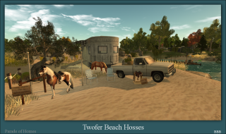 Twofer Beach Hosses