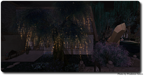 HPMD Trees  Bushes  Flowers Nighttime